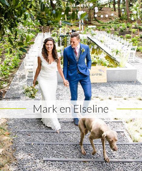 mark-en-elseline-uitgelicht